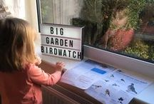 #BigGardenBirdwatch / It's January and that means one thing – Big Garden Birdwatch! We are asking you to tell us about the feathered friends you see in your garden - tag us in your blogs, in your photos and videos so that we can see what you've seen. To find out more, head to www.rspb.org.uk/birdwatch.