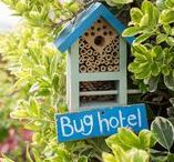 #MyHomeForNature / We need you to help create a million homes for nature and turn the UK's gardens into havens for our flapping, fluttering, buzzing, burrowing, snuffling and slithering neighbours. No matter how big or small your outside space, there's something you can do to make a difference. So whether it's putting up a nest box, digging a pond, planting wild flowers in pots, constructing a hedgehog house or making a bug hotel, if you build it, they will come. To find out more visit rspb.org.uk/myplan