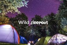 #BigWildSleepout / Swap your home for nature's home and discover a secret world of wildlife in your garden!! Sleep under the stars for the RSPB's #BigWildSleepout on 29 - 31 July 2016. For more info please visit: rspb.org.uk/sleepout.