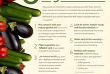 Organic Food Information / Helpful information about how to choose organic foods