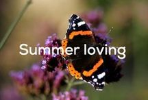 Summer loving! / Long days, warm sun (hopefully!), trips to the seaside and holidays - we love summer!