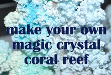 Reef stuff / Beautiful, silly, creative, just everything we love about coral reefs