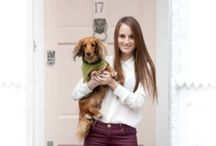 Celebrity Dogs / Click through each picture to access our PetsPyjamas.com Blog and read all about these stylish pet owners and their four legged friends!