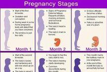 When I'm Pregnant / by Erin Harrington