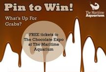 The Chocolate Expo Challenge / The Chocolate Expo Challenge is over, thanks for playing along with us!  / by The Maritime Aquarium at Norwalk
