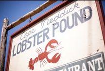 Maine Lobster Bake Wedding