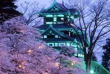 dreamland  [ 日本 ]