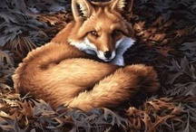 Foxy / by Laura Major@Learning Is Child's Play