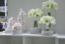 Inspiring florals... / by Lauren Williams