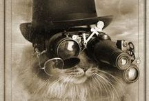 Victorian & Steampunk Ideas / Inspirations for costumes & accessories.