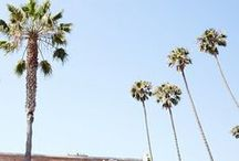 LA Road Trip / Highlights from our Los Angeles road trip--from Hollywood to Abbot Kinney, and everything in between.  / by Fossil