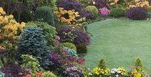 zahrady ,chaty,nápady