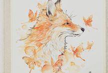Vulpi/Foxes