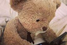 Misery Bear / Es geht um einen Bären ; )
