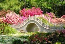 Romantic Bridges
