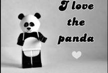 ❤ I love the panda ❤