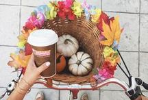 #DDPumpkin / One sip or taste of our Pumpkin flavors and you're ready to embrace all things Fall. That's what #DDPumpkin does to you... and that's a feeling worth sharing! / by Dunkin' Donuts