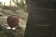 Le coeur & le bois / Le coeur dans un environnement écologique.