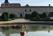 Le coeur & l'évêché de castres. / La construction du palais actuel débute en 1666 à la demande de l'évêque Michel de Tubœuf. Jules Hardouin-Mansart en dessine les plans. Le palais est inauguré en 1673.