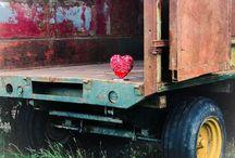 Le coeur & les vestiges industriels / Le coeur