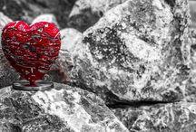 Le cœur & la force de la nature / La force de la nature rencontre notre cœur