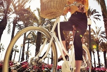 Bikes / by Rachel Esther