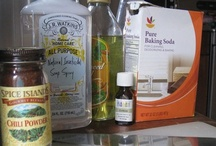 Natural News & Products / by Jane Wick