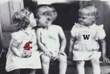 coug for life / by Jennie Herrmann