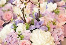 ❥❥ A L L the C O L O R S ❥❥ / All colors, kleuren, pastel, pink, green, mint etc