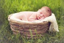 Newborn Photography / by Giudittak .