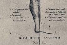 Anselmo Ronchetti