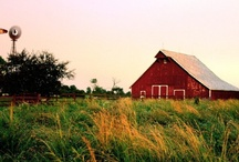 [Barns] / One of my favorite things in the world!