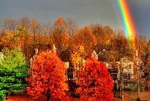 ~over the rainbow~ / the rainbow is a promise... / by Lissa Leak