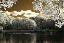 Beautiful places / by Sue Ashtigo Pittard
