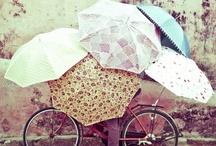 Raining umbrellas / by Patricia Hu
