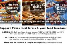 Locavore Austin / Local food in Austin, Texas. #localfood #locavore #austin #atx