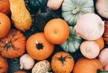 Autumn Love / Harvest, Autumn, Pumpkins, Thanksgiving - all things autumnal: fall decoration, pumpkin recipes, fall photography, leaves, indian summer forests and more.