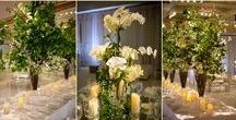 "The World of Marc Hall / Amazing florals and event design in Boston. Marc Hall Design and Marc Hall Objekt: ""The World of Marc Hall"""