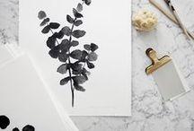 • plants •