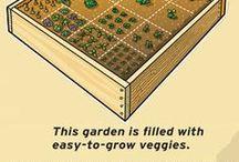 Gardening / Information on gardening