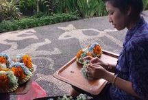 Bali Travels / Take a peek at this beautiful island with its rich artistic culture and traditions.  / by Nina Designs.com