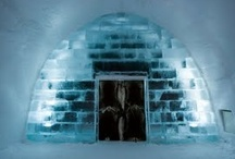 ICEHOTEL Sweden / A stay in the ICEHOTEL in Jukkasjärvi is the ultimate Winter Adventure! Sculpted from ice and snow, this incredible work of art in the heart of Swedish Lapland, provides the base for a truly unusual winter break. ICEHOTEL, now in its twentythird year, is the world's biggest hotel made entirely of ice. Choose between warm or cold accommodation; combine one cold night in ICEHOTEL in an Ice room or Suite, with several warm nights in hotel rooms or chalets. / by Five Stars of Scandinavia, Inc.