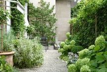outdoor space / by Amanda Holland - Small Acorns