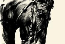 Equus / by Margie Hanna