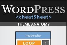 Media - Print & Web Design
