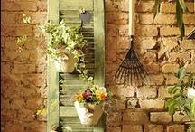 """ Garden, Exterior "" / by Fanta- Xyst-A"