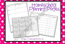 Organization in the Homeschool  / by Blessed Beyond a Doubt