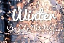 Winter Wonderland / by Amanda D.