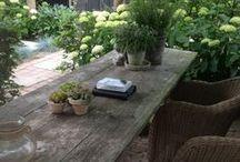 tuin ideeën / combinatietuin: landelijk, wild en boerentuin