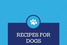 Recipes for Dogs / Make your own pet treats and show your love.